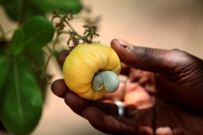 1473692773_cashew-nut