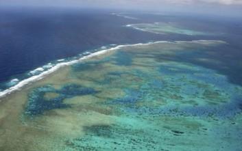 Τεράστιες απώλειες στον Μεγάλο Κοραλλιογενή Ύφαλο: Χάθηκαν σε 25 χρόνια τα μισά κοράλλια του