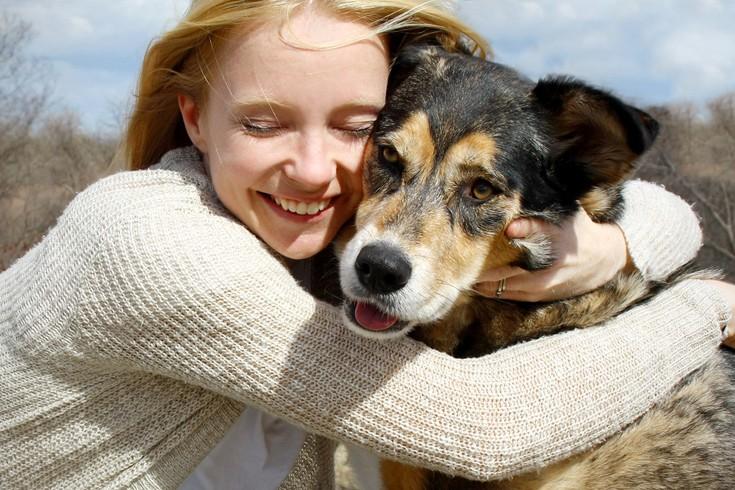 Σκύλος δίνοντας πίπα