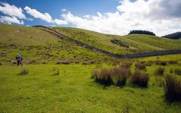 newzealand6
