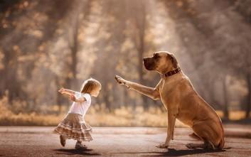 Τα μικρά παιδιά και οι γίγαντες σκύλοι τους