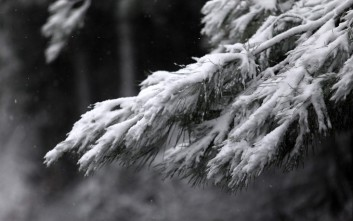 Σφοδρή χιονοθύελλα χτύπησε το Πήλιο