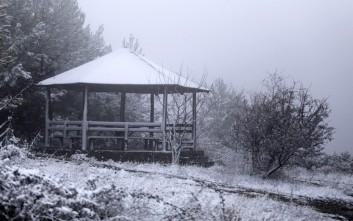 Κτηνοτρόφοι αποκλείστηκαν από το χιόνι στα Σφακιά