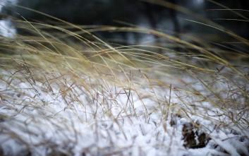 Στο ένα μέτρο το χιόνι σε περιοχές των Τρικάλων