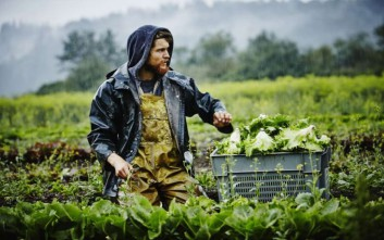 Ένεση ρευστότητας στους έλληνες αγρότες από την Ευρωπαϊκή Επιτροπή