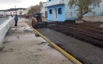 Γέμισαν με φύκια οι δρόμοι στα Καρδάμυλα Χίου