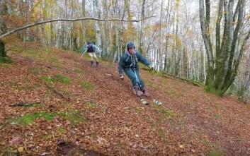 Μια τρελή διαδρομή στο δάσος με... σκι
