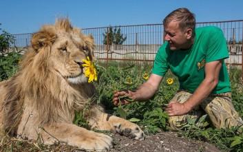 Όταν άνθρωποι και λιοντάρια ζουν αχώριστοι