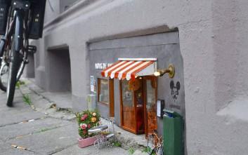 Οι «βιτρίνες» και τα «μαγαζιά» των τρωκτικών στη Σουηδία