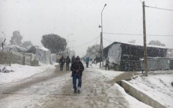 Βυθίστηκαν από το χιόνι οι βάρκες ψαράδων στη Λέσβο