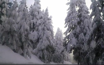Μαγικές εικόνες από το χιονισμένο Κρίκελλο της Ευρυτανίας