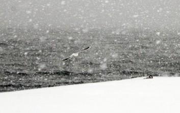 Αποκλείστηκαν χωριά από το χιόνι στην Κέρκυρα