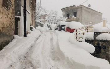 Μετρούν τις πληγές από τον χιονιά στη Στερεά Ελλάδα