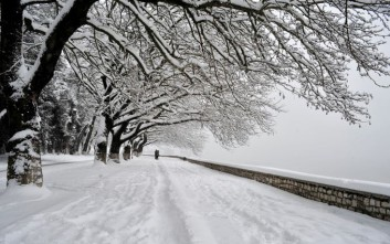 Πάνω από 80% πληρότητα στους χειμερινούς προορισμούς τις γιορτές