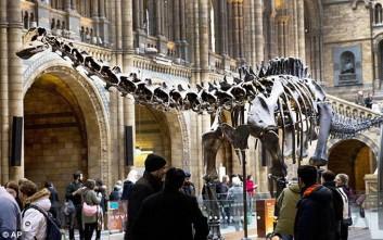 Εντυπωσιακός σκελετός δεινοσαύρου ξεκινά «περιοδεία» σε πόλεις της Βρετανίας