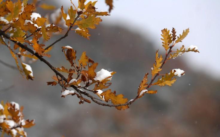 Ραγδαία επιδείνωση του καιρού με θυελλώδεις βοριάδες και παγετό