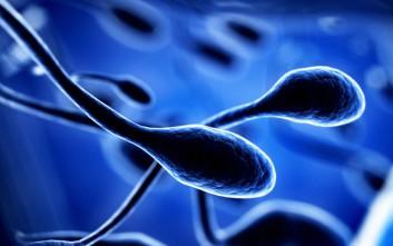 Πώς η άσκηση βελτιώνει την ποιότητα του σπέρματος
