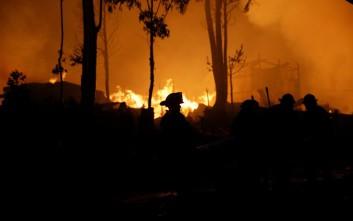 Διεθνής έκκληση βοήθειας από τη Γεωργία για την κατάσβεση μεγάλης πυρκαγιάς