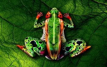 Το body paint που μετατρέπει τους ανθρώπους σε ζώα