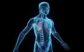 a88c266fc4 Παραπάνω από το μισό σώμα του ανθρώπου… δεν είναι ανθρώπινο – Newsbeast