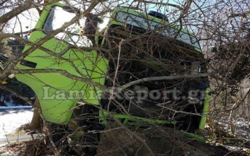Τα δέντρα σταμάτησαν νταλίκα στη Λαμία