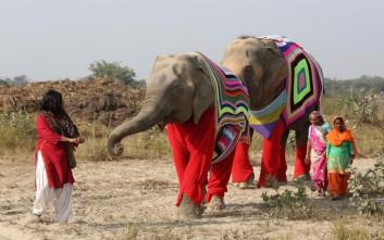 Γιγάντιες πιτζάμες για ελέφαντες στην Ινδία