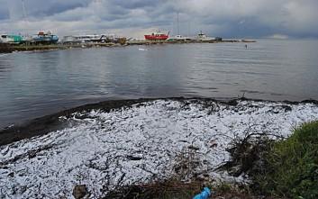 Χιόνια δίπλα στη θάλασσα σε Ζάκυνθο και Κεφαλονιά
