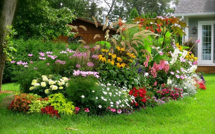 Οικολογική φροντίδα των φυτών από τον Ανδρέα Μπαρμπούτση