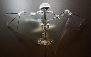 Κατασκευάστηκε το πρώτο ρομπότ-νυχτερίδα