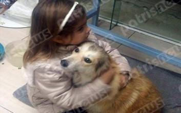 Τα παιδάκια ταΐζουν τα αδέσποτα στην Ηλεία