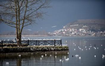 Χειμωνιάτικες εικόνες από τη λίμνη των Ιωαννίνων