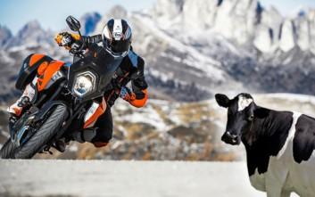 Οι... αγελαδάρηδες απειλούν ν' αλλάξουν τον χάρτη των μοτοσυκλετών στις ΗΠΑ