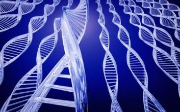 Το ύψος ενός ατόμου επηρεάζεται από 83 γονίδια