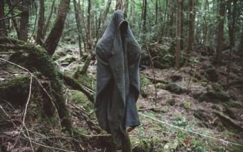 «Η θάλασσα των δέντρων» και τα μακάβρια μυστικά που κρύβει