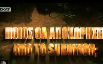 Εκτός ελέγχου η κατάσταση με τους «Διάσημους» του Survivor