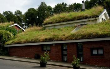Καταπράσινοι κήποι στη στέγη