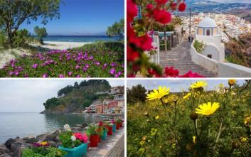 Ανοιξιάτικες εικόνες από την Ελλάδα