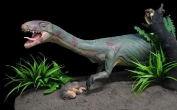 Ανακαλύφθηκε… ξάδερφος των δεινοσαύρων