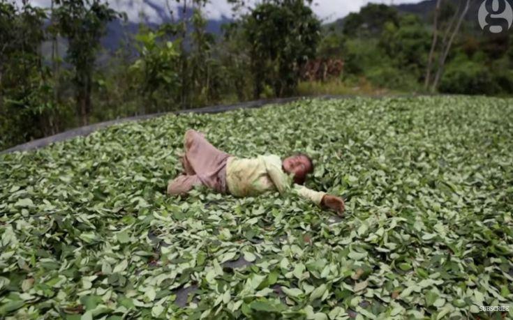 Έτσι είναι η ζωή στην «κοιλάδα της κοκαΐνης» στο Περού