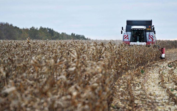 «Eμπλοκή» στις εξαγωγές ρωσικών σιτηρών στην Τουρκία