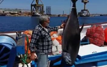 Ψαράς έπιασε δύο τεράστιους τόνους συνολικού βάρους 470 κιλών