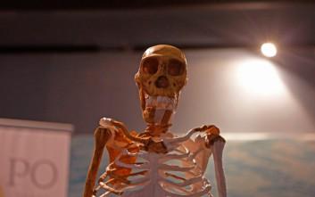 Θα μαρτυρούσατε τα εγκλήματά σας σε έναν… σκελετό;