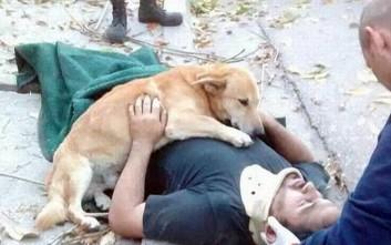 Πιστό σκυλί δεν φεύγει στιγμή από το πλευρό του τραυματισμένου ιδιοκτήτη του