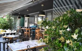Στην Πιπεριά για θαλασσινούς μεζέδες και μεσογειακές γεύσεις