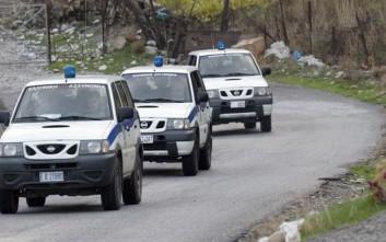 Έξι συλλήψεις για ναρκωτικά και όπλα σε επιχείρηση στην Κρήτη