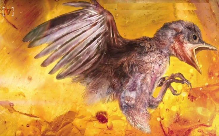 Επιστήμονες βρήκαν αναλλοίωτο πτηνό 99 εκατ. ετών παγιδευμένο σε κεχριμπάρι