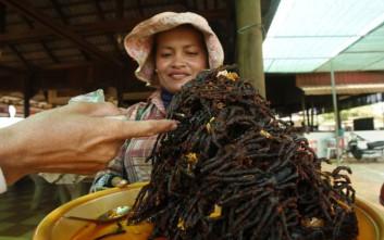 Κυνηγώντας... ταραντούλες στην Καμπότζη