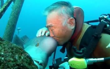 Αυτός ο ιάπωνας δύτης είναι φίλος με ένα ψάρι εδώ και 25 χρόνια!