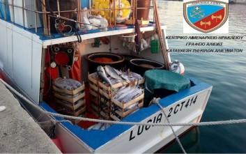 Κατασχέθηκαν πάνω από 750 κιλά ψαριών