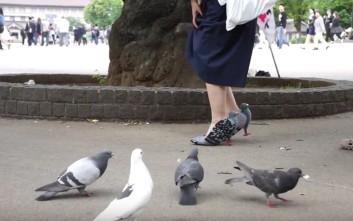 Φορά παπούτσια-περιστέρια για να πιάσει φιλίες με… πραγματικά περιστέρια!